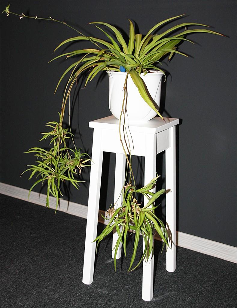 massivholz blumentisch 60cm beistelltisch wei quadratisch. Black Bedroom Furniture Sets. Home Design Ideas