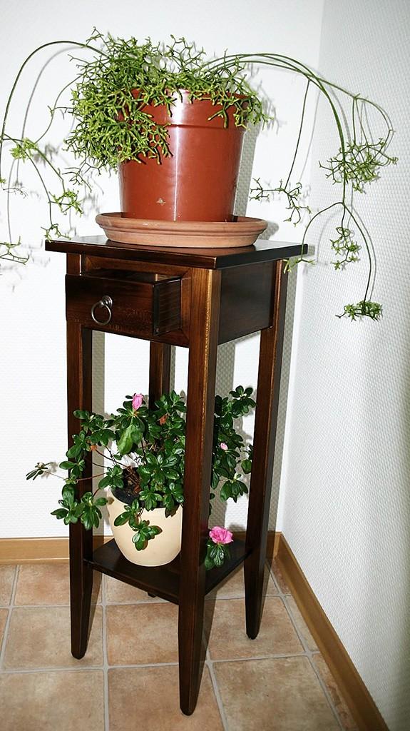 Massivholz Beistelltisch Blumentisch Blumenhocker 80
