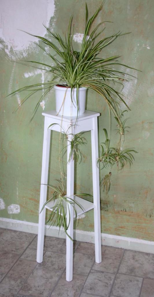 blumentisch blumenhocker blumenst nder 100 holz massiv wei antik. Black Bedroom Furniture Sets. Home Design Ideas